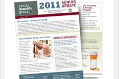 Corporate Newsletter Mailer